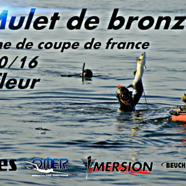 MULET DE BRONZE 2016 A BARFLEUR