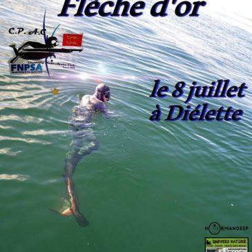 FLECHE D'OR 2018
