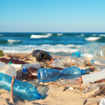 Nettoyage de la plage de Barfleur